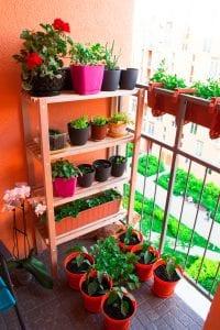 Regał magazynowy na balkonie - półki na kwiaty balkonowe