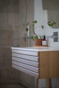 Rośliny do łazienki – jakie gatunki wybrać